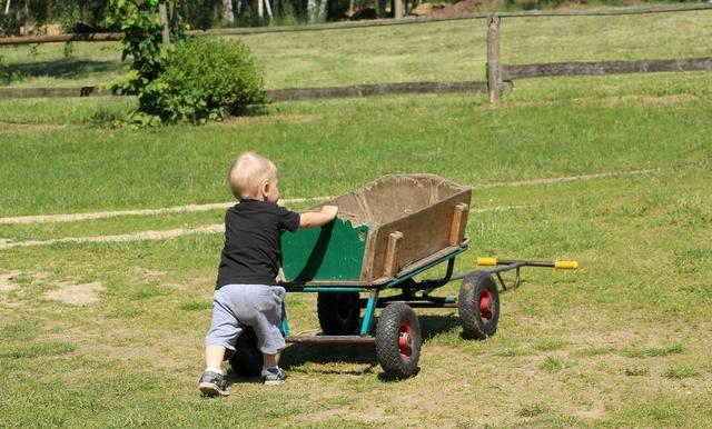 Земельный участок многодетным семьям в 2020 году: как получить бесплатно землю или компенсацию, ЛьготОтвет