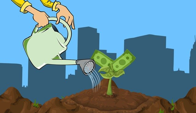 https://pixabay.com/ru/illustrations/инвест-деньги-растущий-план-бизнес-3965215/