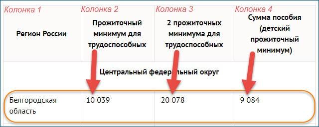 Путинское пособие 2020
