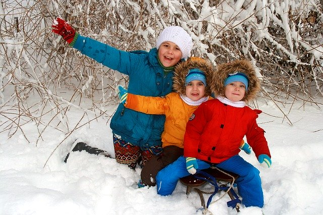 https://pixabay.com/photos/twins-brothers-sister-snow-play-1150193/